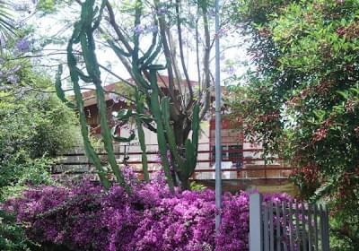 Casa Vacanze Casetta In Agrumeto